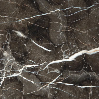 Dynasty Brown Marble Dark Emperador Tile Slab Bathroom